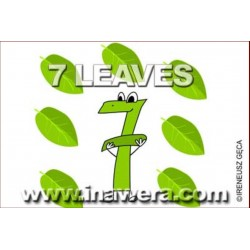 Tino D'Milano 7 Leaves Flavour